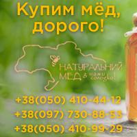Продать мед дать объявление как продать собаку объявление